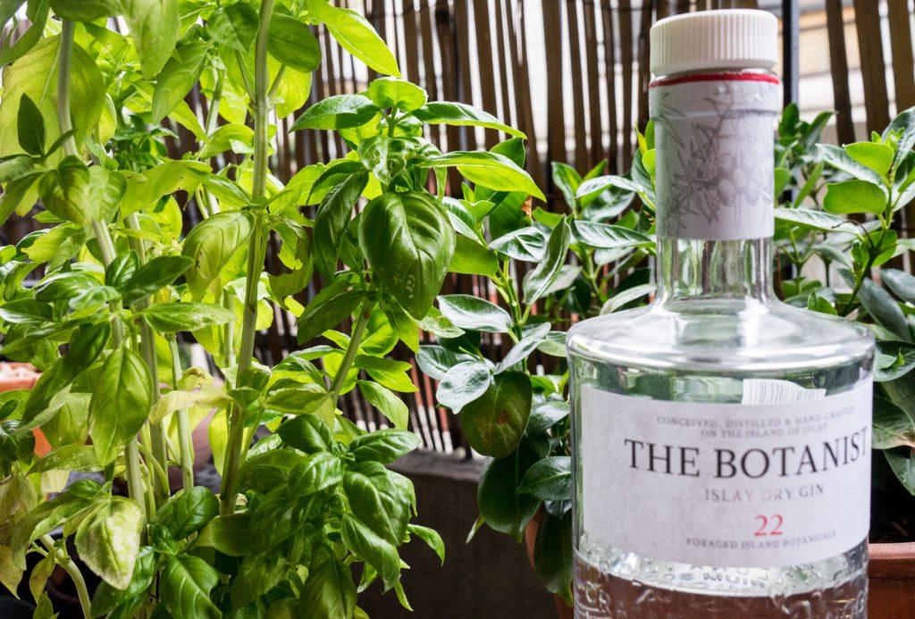 Gin et feuilles de basilic dans un cocktail le combo gagnant