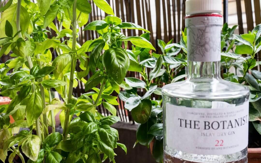 Le basilic dans les cocktails ! Un ingrédient phare